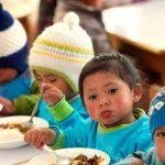 Curso Redución de la Anemia y la Desnutrición Crónica Infantil
